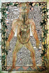 Illustration du XIIIesiècle montrant les veines_WEB