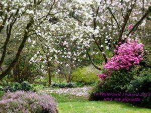 789-jardin-WEB