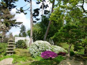 Vue_sur_le_jardin_japonais_Albert_Kahn_3-CAWEB