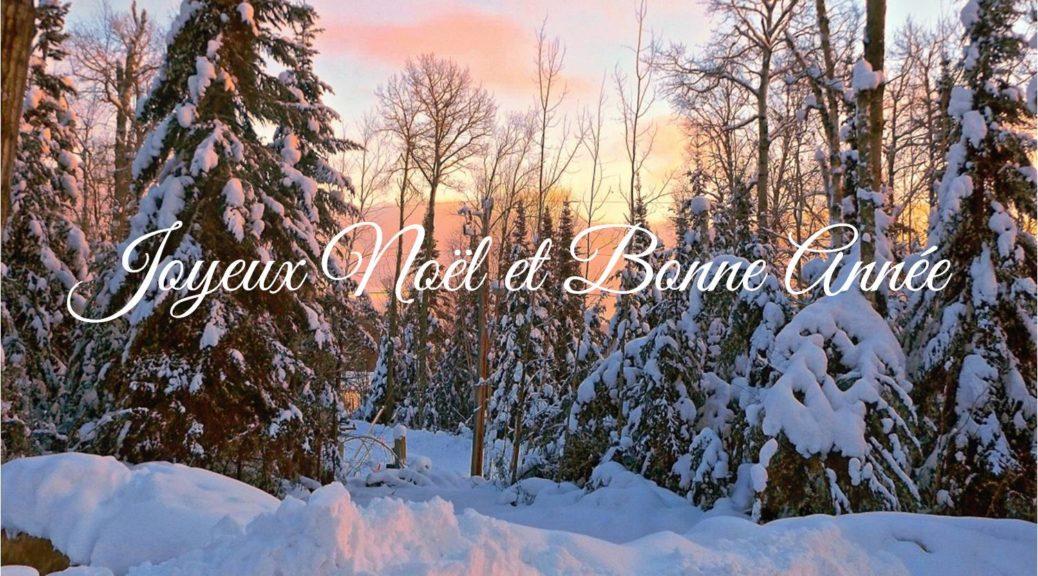 Lever de soleil en hiver-6