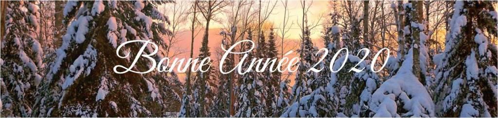 Lever de soleil en hiver-92